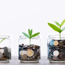 Finanz-kroko-blog